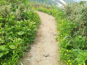 県境は幅1メートルの登山道!福島「飯豊山」で不思議な県境を体感|福島県|トラベルjp<たびねす>