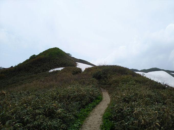 三国小屋の先が、幅約1メートルの危険な登山道。滑落注意の難所「駒返し」や切り立った崖、雪渓も注意!