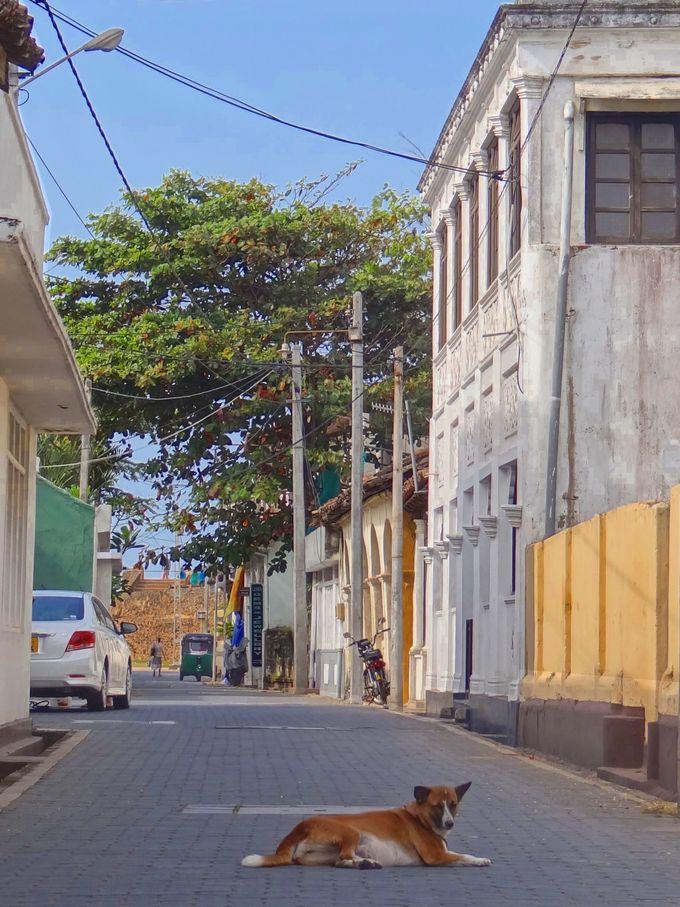 混沌と喧騒から隔離された旧市街
