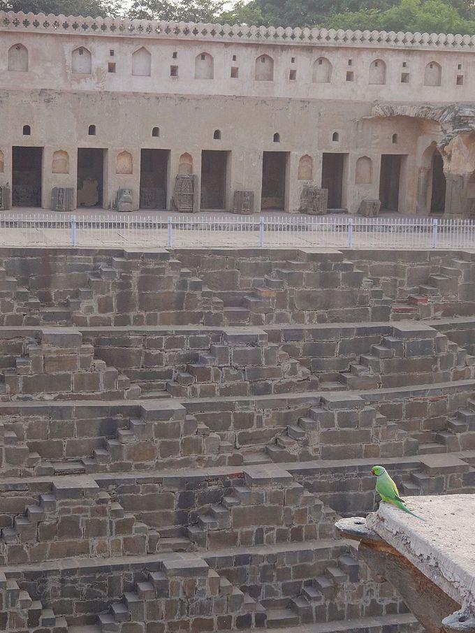 階段井戸トリビア