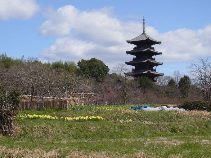吉備路のシンボル 備中国分寺の五重塔。