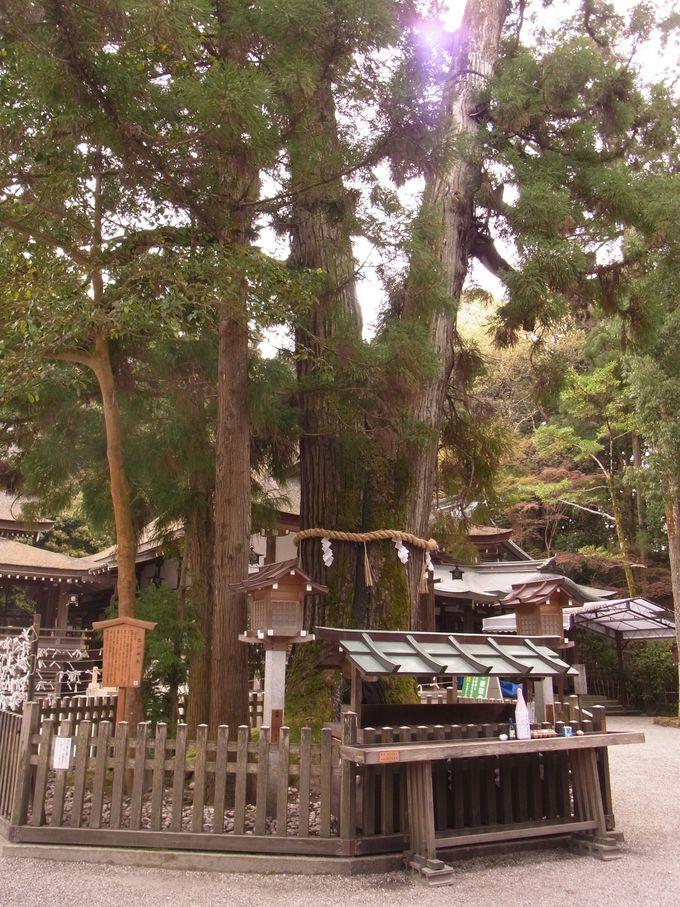 大神神社・三輪山へ行くには。