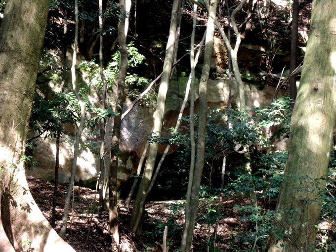 多くの観光客が困惑!泉福寺洞窟の到着間際の獣道