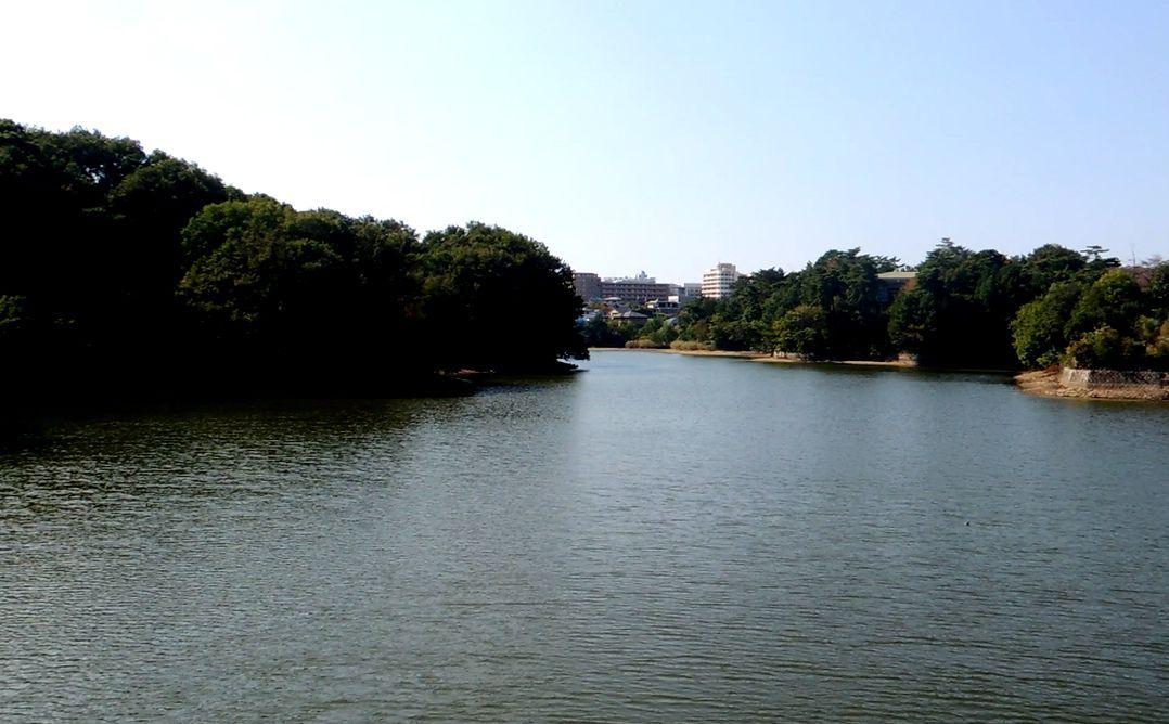 日本最古のダムの真相は謎・・。でも蛙股池の景観の良さは確か!
