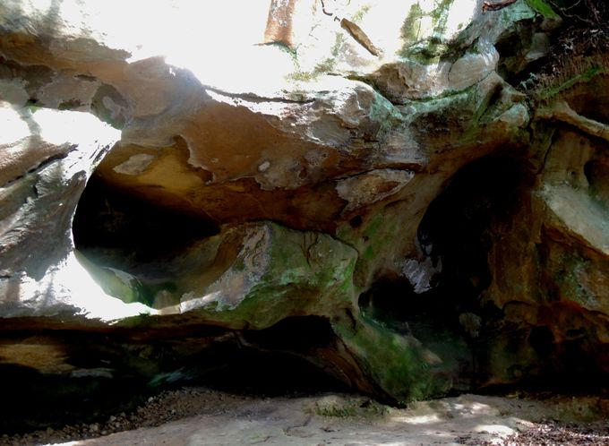 1万2千年以上前の住居跡を間近に見てみよう