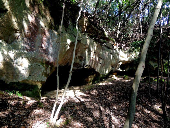 地元中学生のひらめきが導いた、泉福寺洞窟の歴史的発見