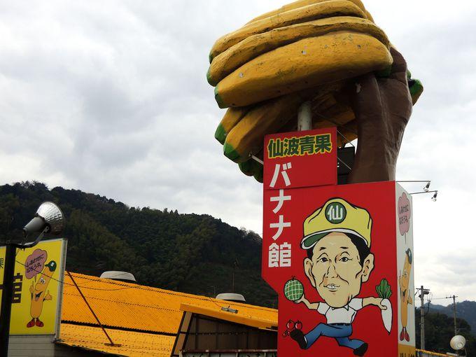 SNSや旅ブログでも人気!バナナ館・伊予店の巨大看板