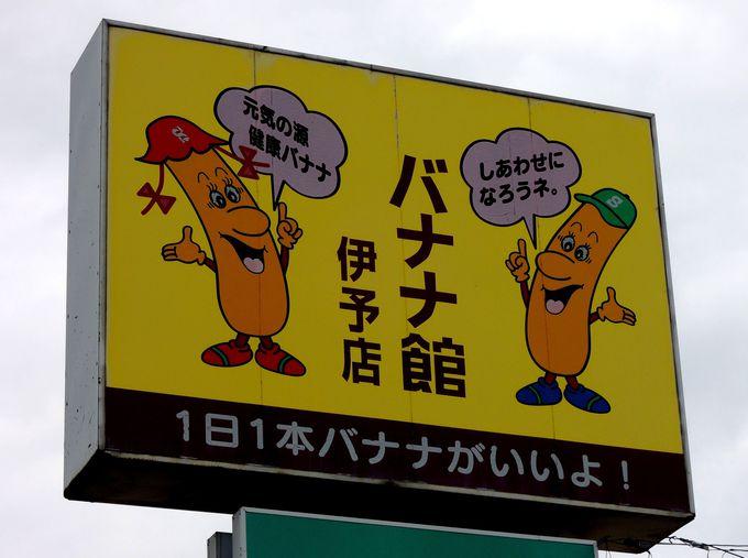 愛媛なのになぜバナナ?バナナ館の名前の由来は先代社長の情熱にあり!