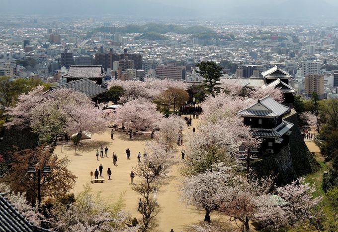 松山城天守から見下ろす絶景と天神櫓(てんじんやぐら)
