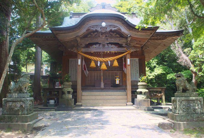 明神池の奥に広がる猫の楽園と厳島神社