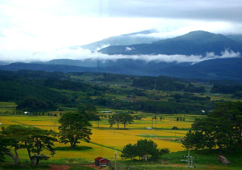 黄金の大地に浮かぶ60の島々!秋田の天然記念物「象潟」九十九島