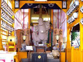 八社巡りで大願成就!佐賀県「佐嘉神社」のご利益いっぱい境内さんぽ