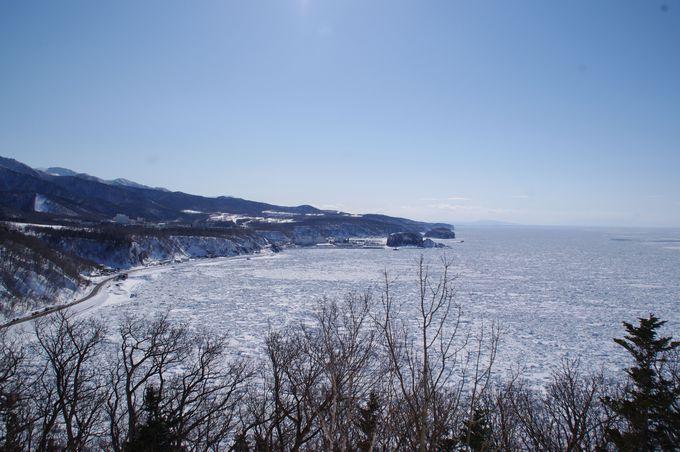 「プユニ岬」で水平線まで続く流氷の壮大さを確かめよう