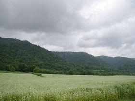 北海道のルーツもココに。道内で一番小さな村「音威子府村」を巡る旅|北海道|トラベルjp<たびねす>
