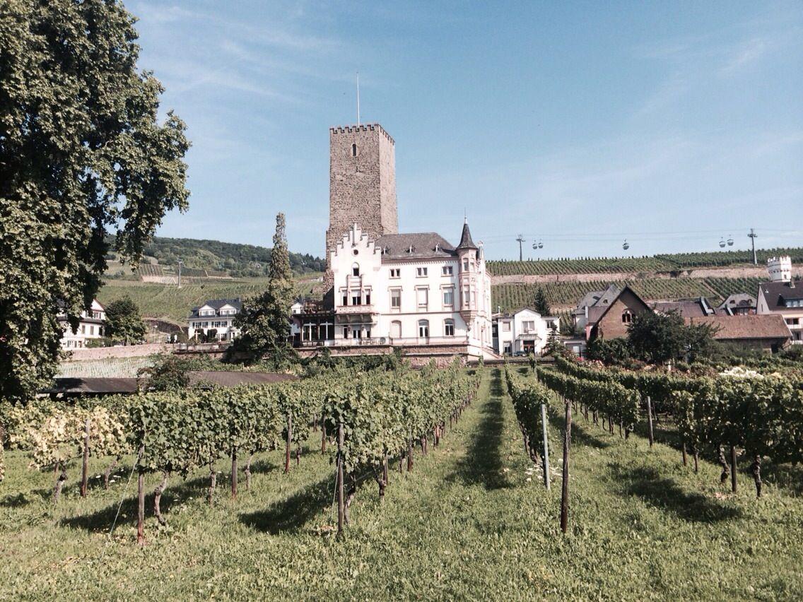 小さなワインの街、リューデスハイム