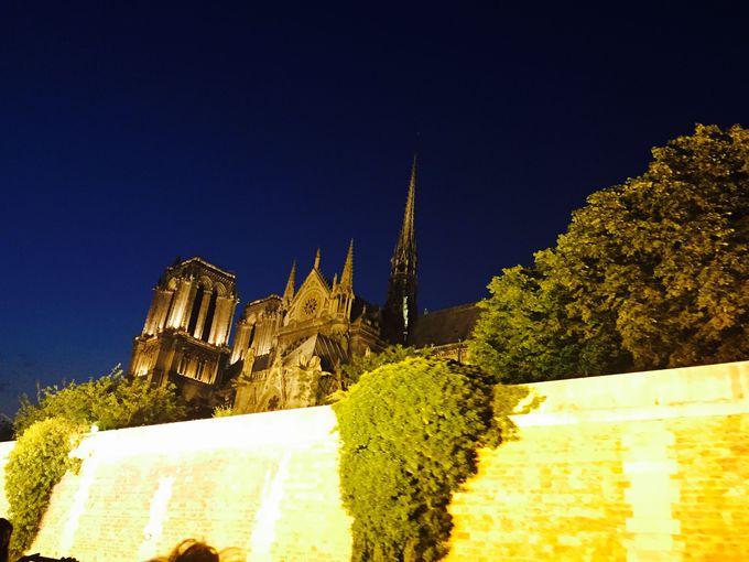 恍惚の境地へ!まさに「花の都、パリ」