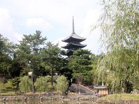 南都八景のひとつ!奈良「猿沢池」から興福寺・五重塔を眺める|奈良県|トラベルjp<たびねす>