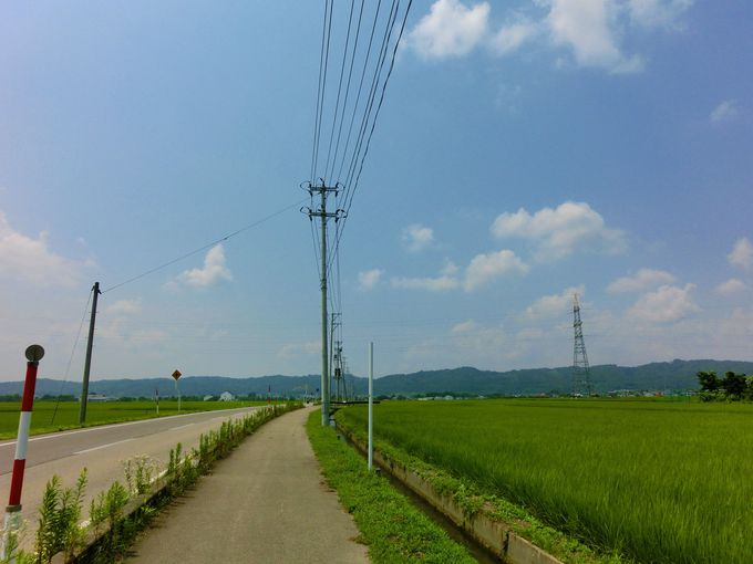 神社やお寺を目指して田園風景の中を自転車で駆けめぐろう!
