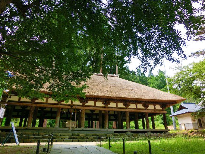 あの熊野三山から分霊!吹き抜けの拝殿が特徴の新宮熊野神社