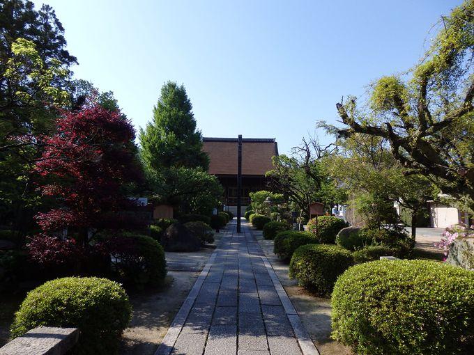 ここも重要文化財!大内義隆の菩提寺の龍福寺