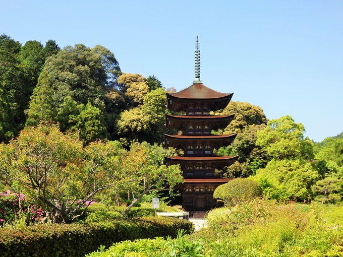 日本三名塔の1つ!瑠璃光寺の五重塔