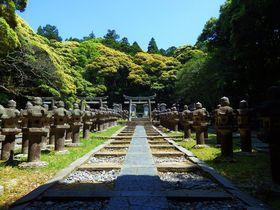 500の灯籠が並ぶ墓所は必見。山口県・萩「東光寺」|山口県|トラベルjp<たびねす>