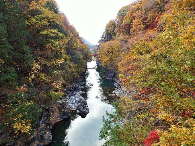ダム近くの橋から見る渡良瀬川は絶景