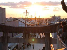 JALのCMで嵐も見た絶景!福岡県「宮地嶽神社」光の道が超絶キレイ!|福岡県|トラベルjp<たびねす>
