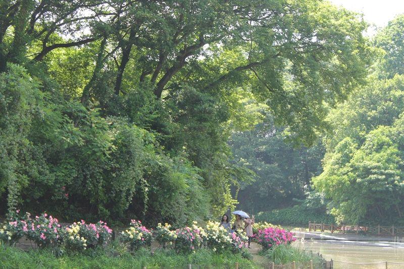 英国オックスフォード大学・ケンブリッジ大学との交流を記念した英国式庭園