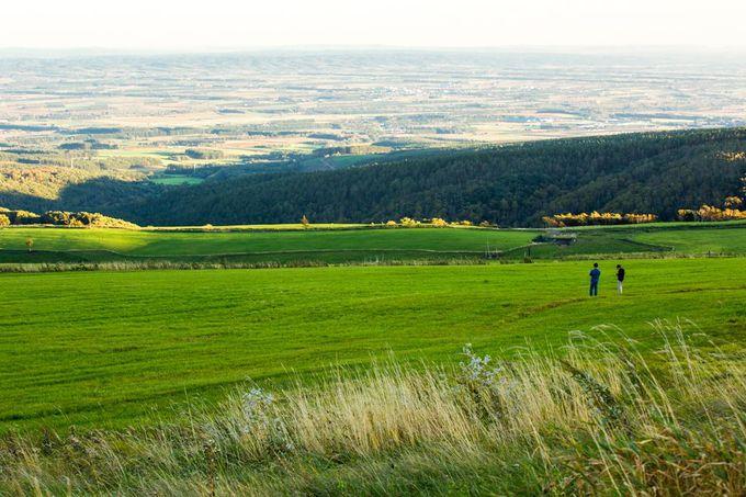 展望台から見る、絶景の十勝平野
