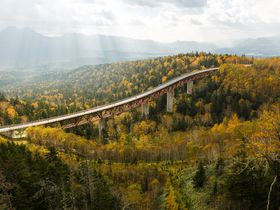 圧巻の巨大橋!北海道・三国峠の樹海ロードに見る絶景と清涼|北海道|トラベルjp<たびねす>