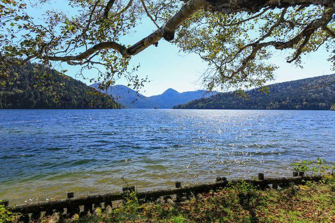 然別湖で自然体験!そして湖畔の野営場