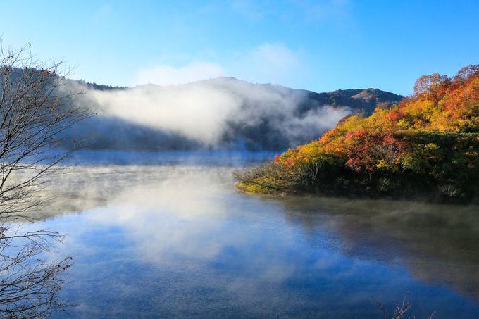 早朝のダム湖は朝霧の神秘の世界