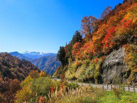 絶景、紅葉&名滝!白山白川郷ホワイトロードで世界遺産も!|石川県|トラベルjp<たびねす>
