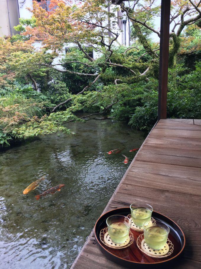 美しい水を求めて!水の都・長崎「島原」を訪ねよう