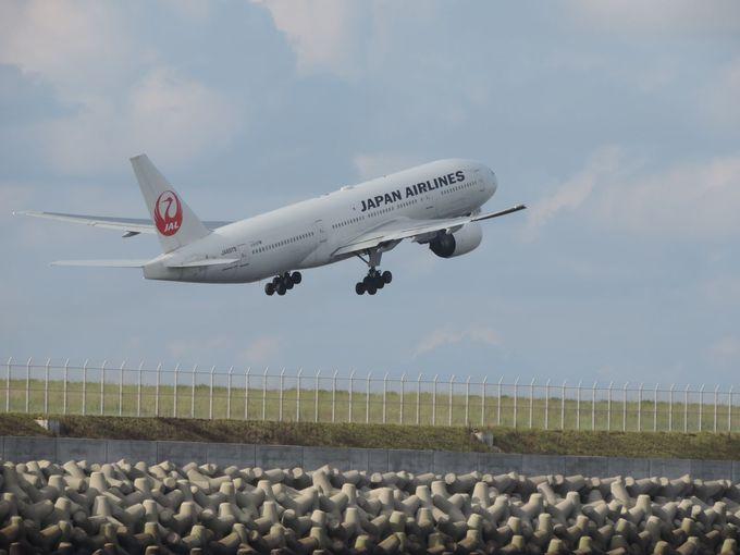 大迫力!羽田空港を離発着する航空機をすぐそばで洋上ウオッチング