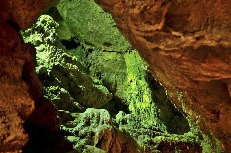 総延長1500mの洞窟でコウモリに会おう!長崎県「七ツ釜鍾乳洞」