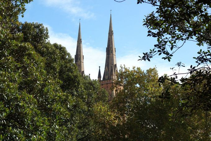 緑の中に映えるゴシック教会