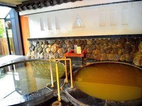 全国唯一!城郭内で濁り湯が湧く「長浜太閤温泉・豊公荘」貴重な琵琶湖湖畔の宿|滋賀県|トラベルjp<たびねす>