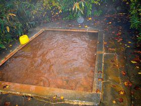 紅葉の名所は温泉も染まる!新潟・関温泉「中村屋」の赤い湯に浸かろう!|新潟県|トラベルjp<たびねす>
