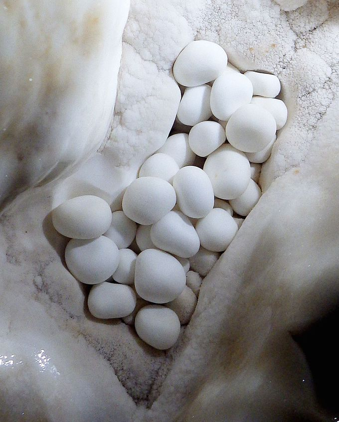 地球を感じる、多種多様な鍾乳石!