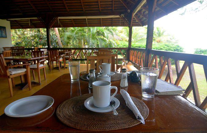 風が吹き抜けるレストランで気持ち良い朝食を。