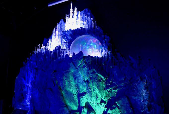 神秘的な世界が広がる「深海」を体験