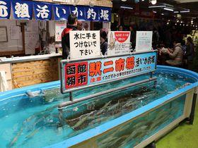 函館朝市駅二市場で大人気!「活いか釣堀」に挑戦して、新鮮なイカの刺身を堪能しよう|北海道|トラベルjp<たびねす>