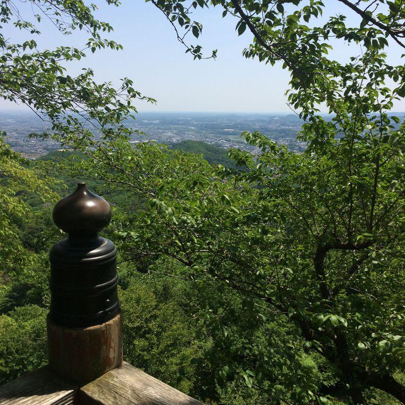 ファミリーやペットも一緒に!気軽に絶景が楽しめる 埼玉「鐘撞堂山」ハイキング