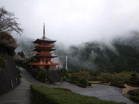 絶対に外せない!世界遺産熊野古道・いにしえの巡礼路の見どころ|和歌山県|トラベルjp<たびねす>