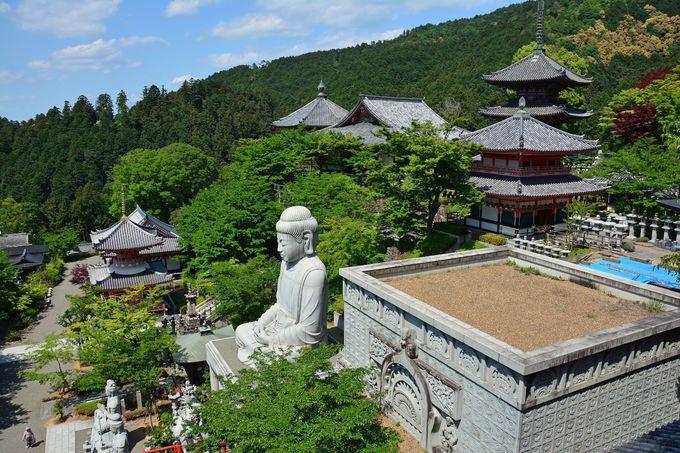 とてもお寺とは思えないくらいの広大さと、仏像の数々