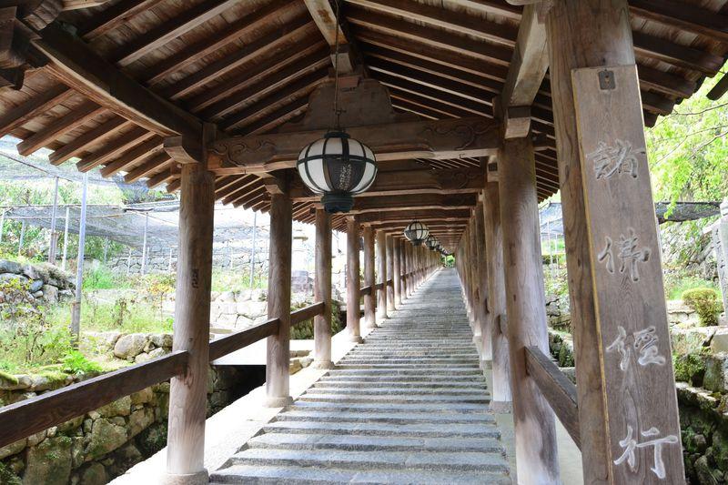 奈良の美しい景色と国宝の建築美が融合した総本山・長谷寺へ