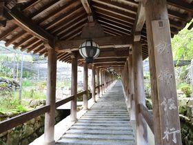 奈良の美しい景色と国宝の建築美が融合した総本山・長谷寺へ|奈良県|トラベルjp<たびねす>