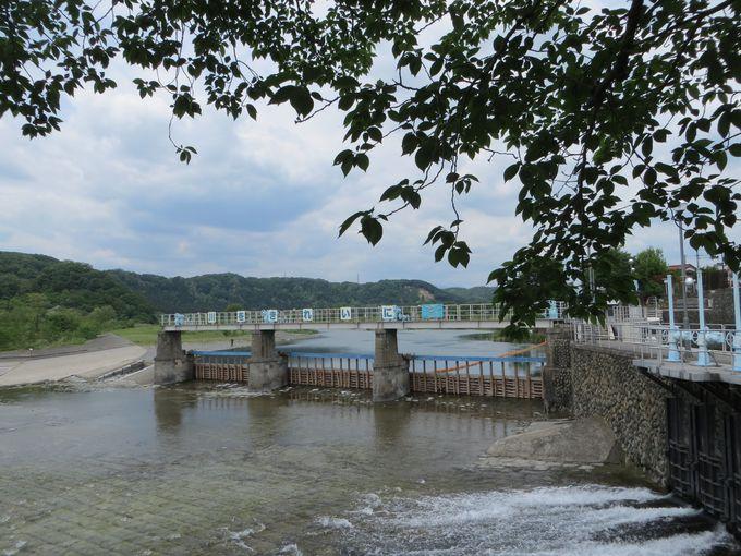 東京四谷から43キロ。多摩川上流から始まる玉川上水の源へ。